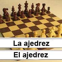 Articles: Spanish Article Game